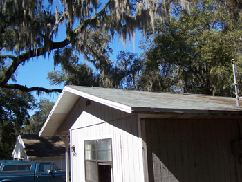 Repaired Roof Damage From Tree In Brooksville Florida