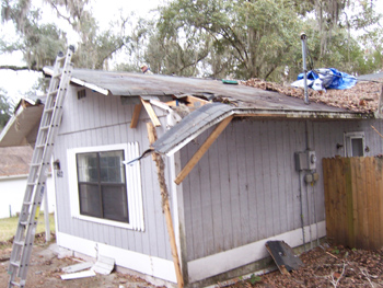Tree Fall Roof Damage In Brooksville, Florida